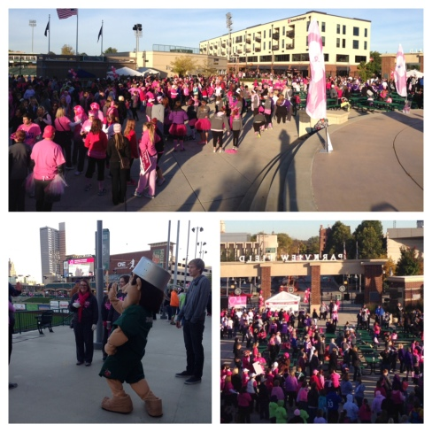 Making Strides Walk - Oct. 11, 2014 (2)