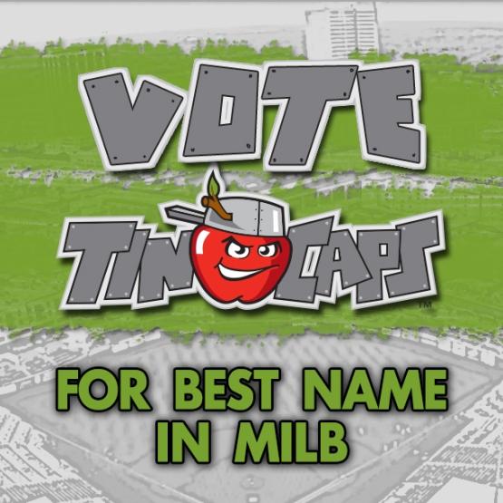 VOTE_TinCaps2